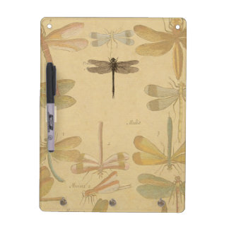 Vintage dragonfly drawing dry erase board