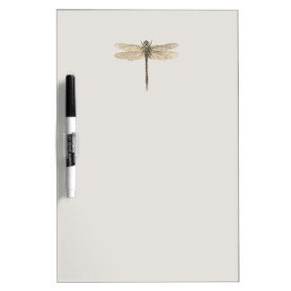 Vintage dragonfly drawing Dry-Erase board