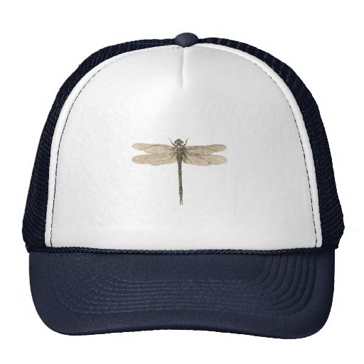 Vintage dragonfly drawing trucker hats