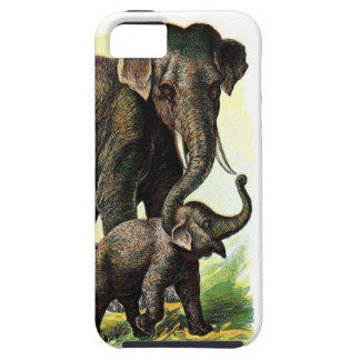 Vintage Drawing: Mother Elephant with Calf iPhone 5 Case