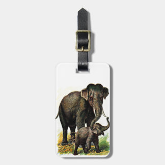 Vintage Drawing: Mother Elephant with Calf Luggage Tag