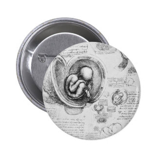 Vintage drawing of a fetus in the uterus 1 2 inch round button