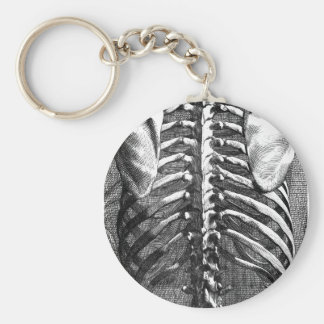 Vintage drawing of a spine and ribcage basic round button keychain