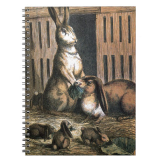 Vintage Drawing: Proud Bunny Parents Spiral Notebook