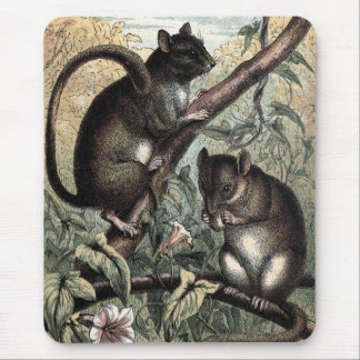 Vintage Drawing: The Dormouse Mouse Pad