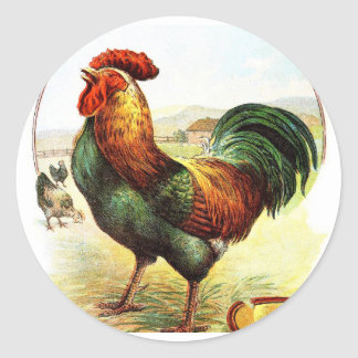 Vintage Drawing: The Rooster Classic Round Sticker
