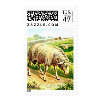 Vintage Drawing: The Sheep Postage