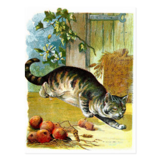Vintage Drawing: The Sly Cat Postcard