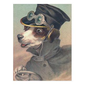 """""""Vintage Driver Dog"""" Postcard"""