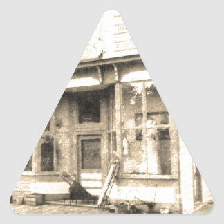 Vintage Dry Goods Building Triangle Sticker
