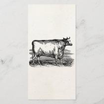 Vintage Durham Cow Bull Personalized Illustration
