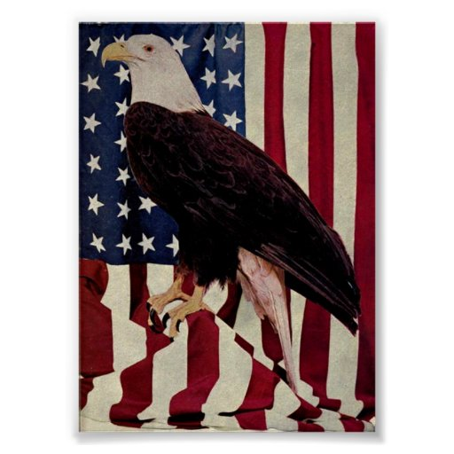 Vintage Eagle calvo el bandera americana el 4 de j Póster