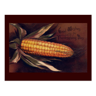 Vintage Ear of Corn Thanksgiving Postcards