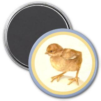 Vintage Easter Baby Chick Magnet
