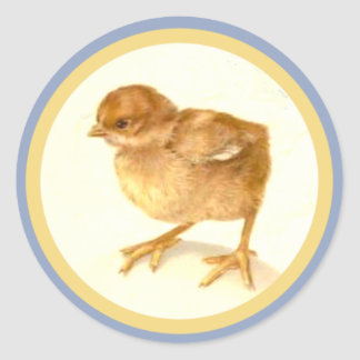 Vintage Easter Baby Chick Sticker