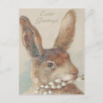 Vintage Easter Bunny Rabbit Holiday Postcard