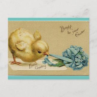 Vintage Easter Chick Holiday Postcard