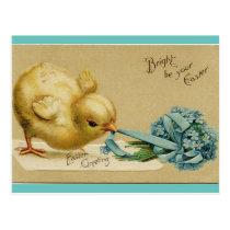 Vintage Easter Chick Postcard