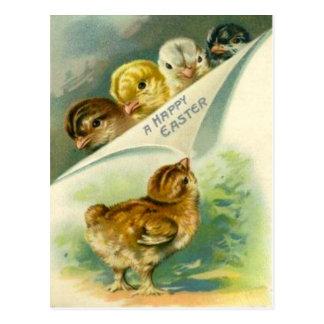 Vintage Easter Chicks Easter Card