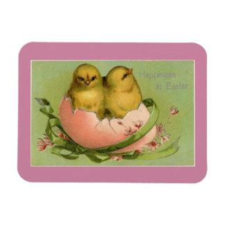 Vintage Easter Chicks Magnet