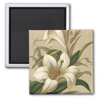 Vintage Easter Lilies, Victorian Flowers in Bloom 2 Inch Square Magnet