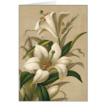 Vintage Easter, Victorian Lily Flowers in Bloom Greeting Card