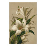 Vintage Easter, Victorian Lily Flowers in Bloom Poster