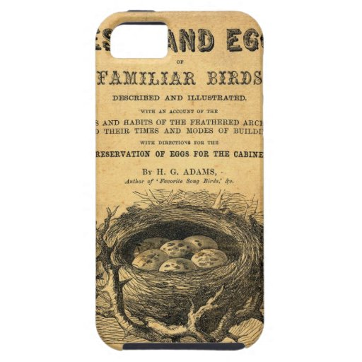 Vintage Egg Birds Nests Illustration-iPhone 5 iPhone 5 Covers