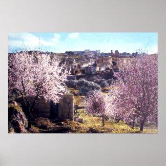 Vintage el monte de los Olivos Jerusalén Israel 19 Póster