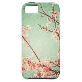 Vintage elegant worn teal wood & cherry blossom iPhone 5 cover