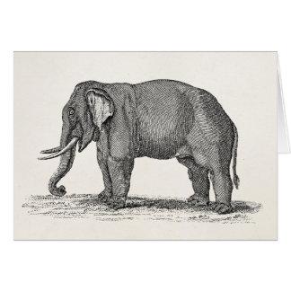 Vintage Elephant 1800s African Elephants Template Card