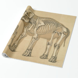 Vintage Elephant and Human Skeleton Illustration Wrapping Paper