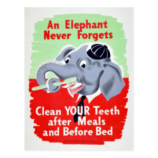 Vintage Elephant Dentist Brush your Teeth Postcard