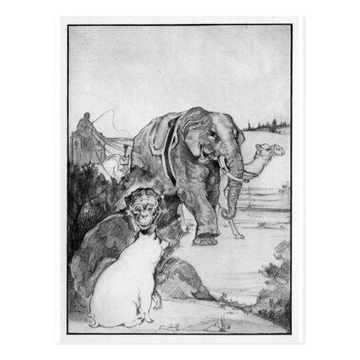 Vintage Elephant Illustration Postcard | Zazzle Vintage Elephant Illustration