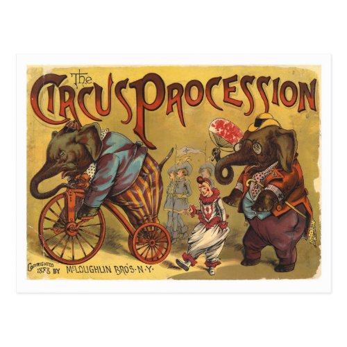 Vintage Elephants Circus Procession Postcard