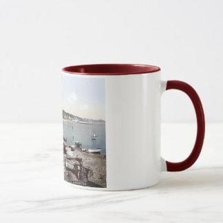 Vintage England Dawlish  Harbour 1890's Mug