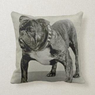 Vintage English Bulldog Photograph Throw Pillow