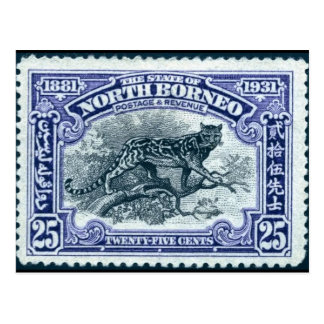 Vintage Engraved Stamp Postcard