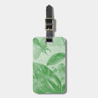 Vintage Entomology Green Katydid Flying Leaf Bag Tag