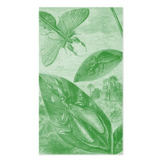 Vintage Entomology Green Katydid Flying Leaf Business Card