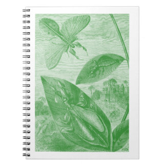 Vintage Entomology Green Katydid Flying Leaf Notebook