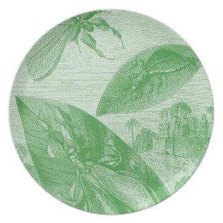 Vintage Entomology Green Katydid Flying Leaf Plate