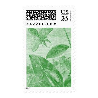 Vintage Entomology Green Katydid Flying Leaf Postage