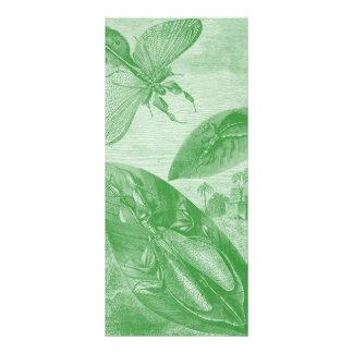 Vintage Entomology Green Katydid Flying Leaf Rack Card