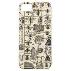 Vintage Entomology Iphone Se/5/5s Case at Zazzle