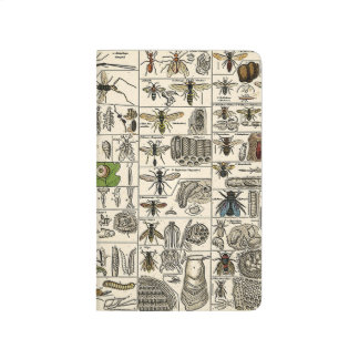 Vintage Entomology Journal