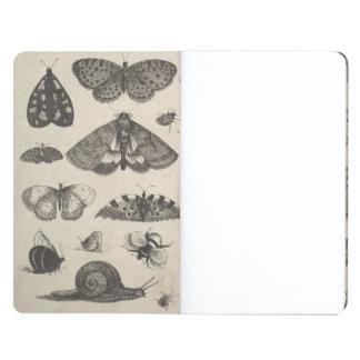 Vintage Entomology Lepidoptera Field Notes Nature Journal