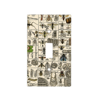 Vintage Entomology Light Switch Cover