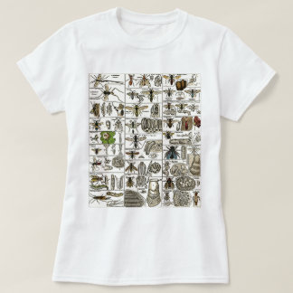 Vintage Entomology T-Shirt
