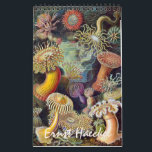 "Vintage Ernest Haeckel, Biology, Botany, Science Calendar<br><div class=""desc"">2017 Vintage illustrations by Ernst Haeckel wall calendar. Great gift for science nerds and geeks!  From Marine biology to botany and beyond! Includes animals,  creepy spiders,  tropical plants,  orchids from the rainforests,  aquatic life,  sea anemones,  sea slugs,  jellyfish,  turtles,  tortoises,  lizards,  frogs,  seashells,  octopi,  giant squid and more!</div>"